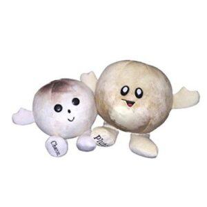 Celestial Buddies - Pluto & Charon