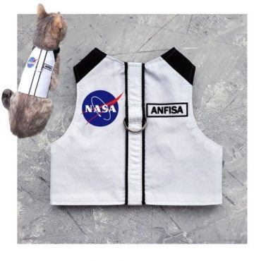 NASA Cat Harness